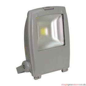 Eagle Slimline LED floodlight (L340FC)