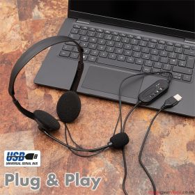 Stereo USB PC Headset with Flexible Boom Microphone
